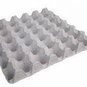 Egg Crates (100 in a bundle)