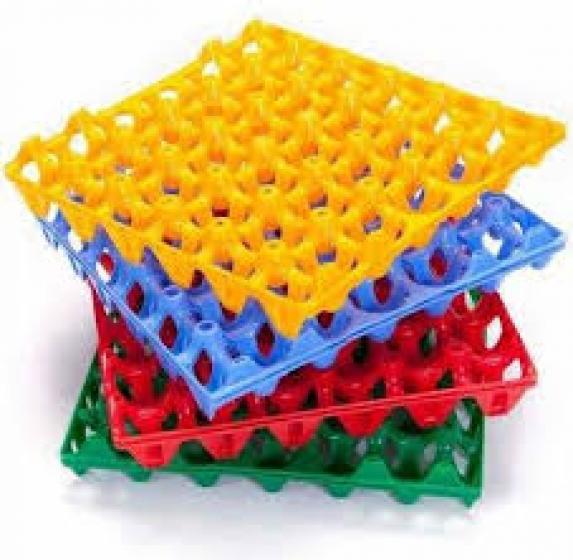 Egg Crates - Plastic ( 100 in a bundle)
